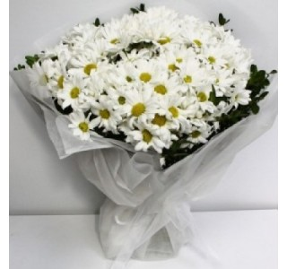 Sevgiliye Çiçek - Papatya Buketi eskişehir çiçek, çiçek satın al, eskişehir online çiçekçi, eskişehir çiçekçi, eskişehir ucuz çiçek, eskişehir internetten çiçek