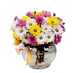 Sevgiliye Çiçek - Renkli Dünyam eskişehir çiçek, çiçek satın al, eskişehir online çiçekçi, eskişehir çiçekçi, eskişehir ucuz çiçek, eskişehir internetten çiçek